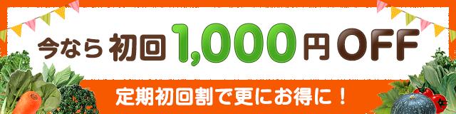 今なら初回1,000円OFF キャンペーン実勢中!