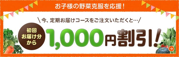 野菜不足応援キャンペーン 1,000円OFF!