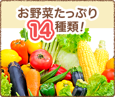お野菜たっぷり14種類!
