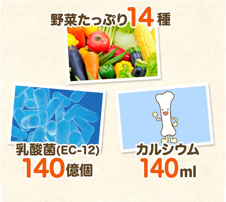 野菜たっぷり14種