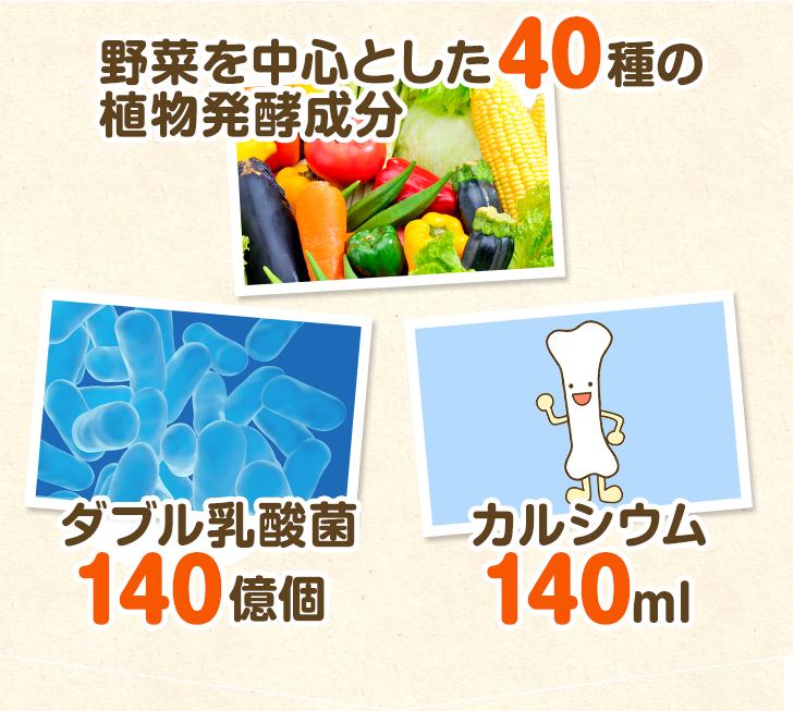 野菜たっぷり40種